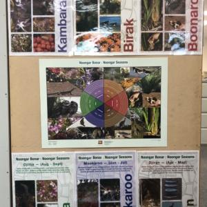 Noongar Season Package