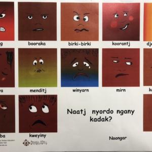 A3 Feelings Poster