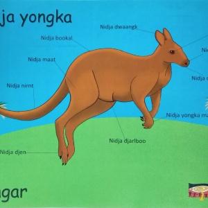 Nidja Yongka (This is a Kangaroo) – A3 poster